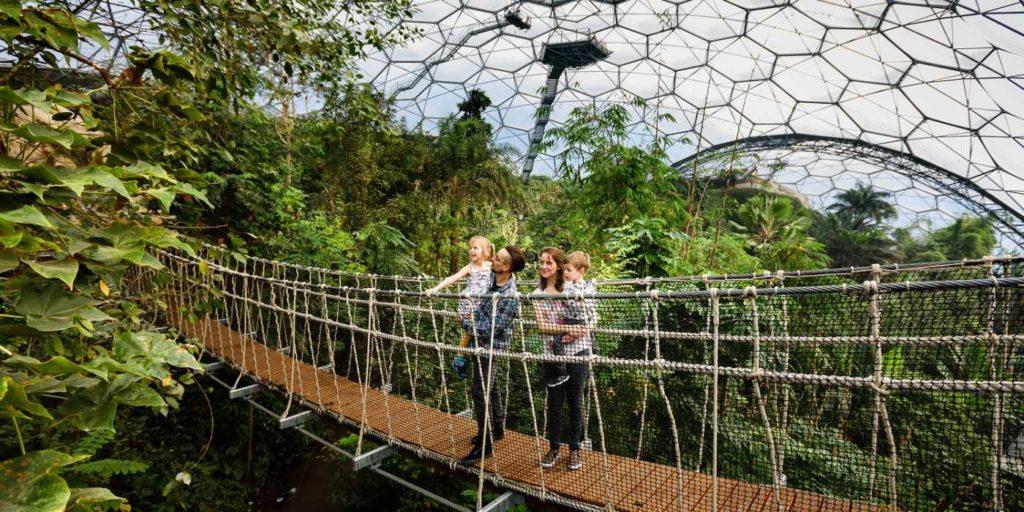 family-wobbly-bridge