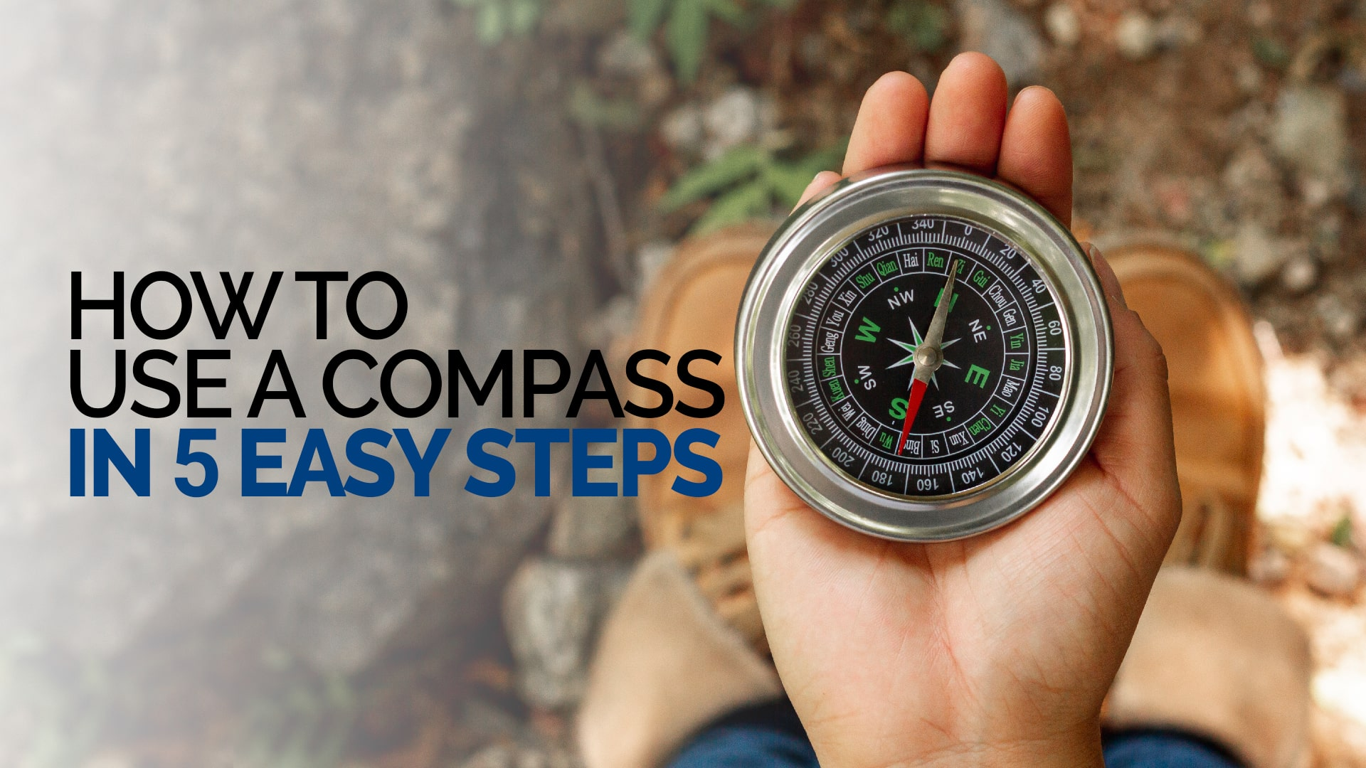 How to use a compass in 5 easy steps