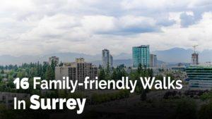 16 Family-friendly Walks In Surrey