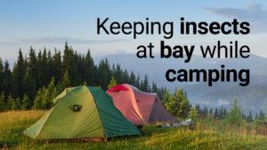 keeping insects at bay while camping