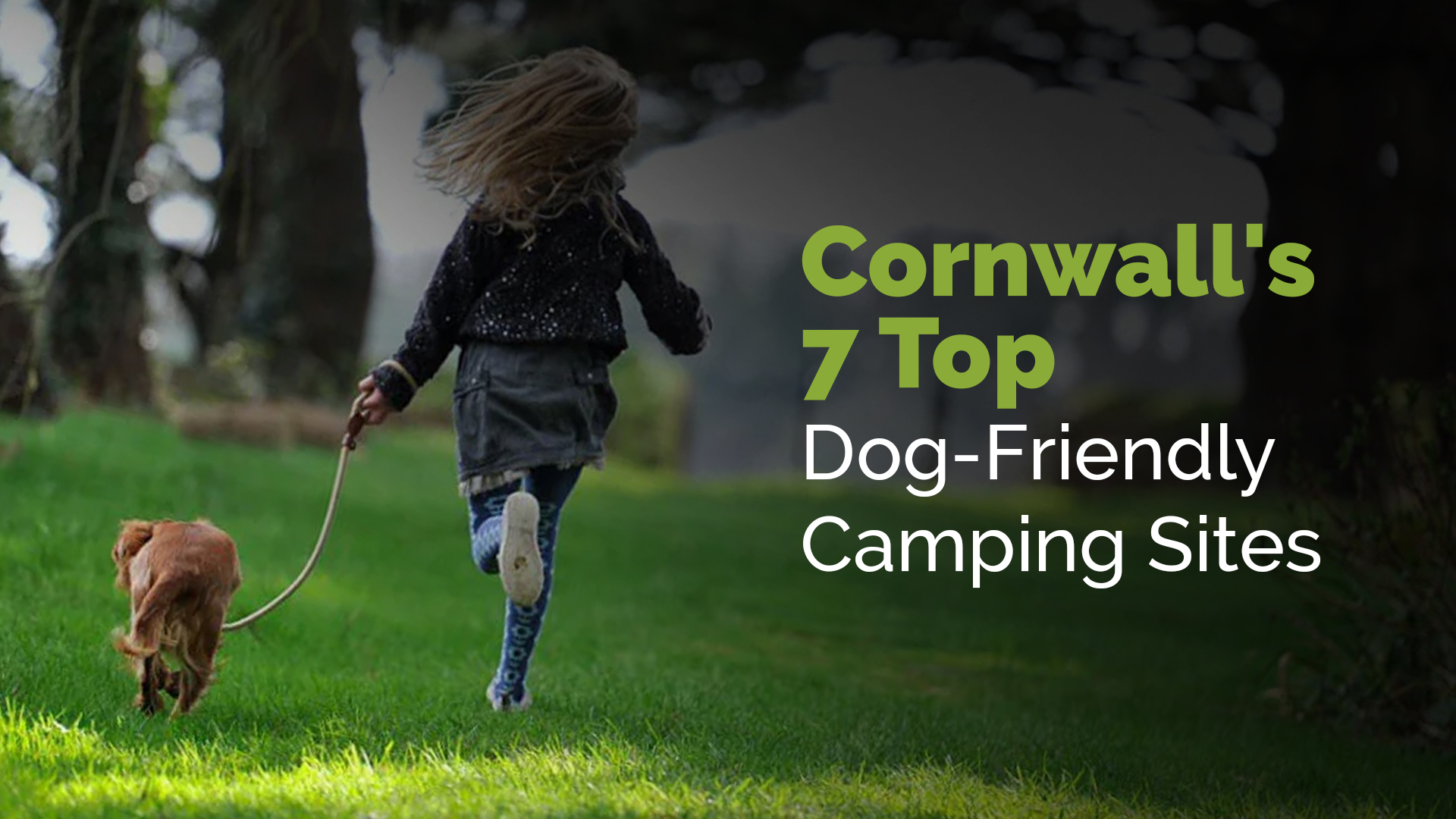 Cornwall's 7 Top Dog-Friendly Camping Sites