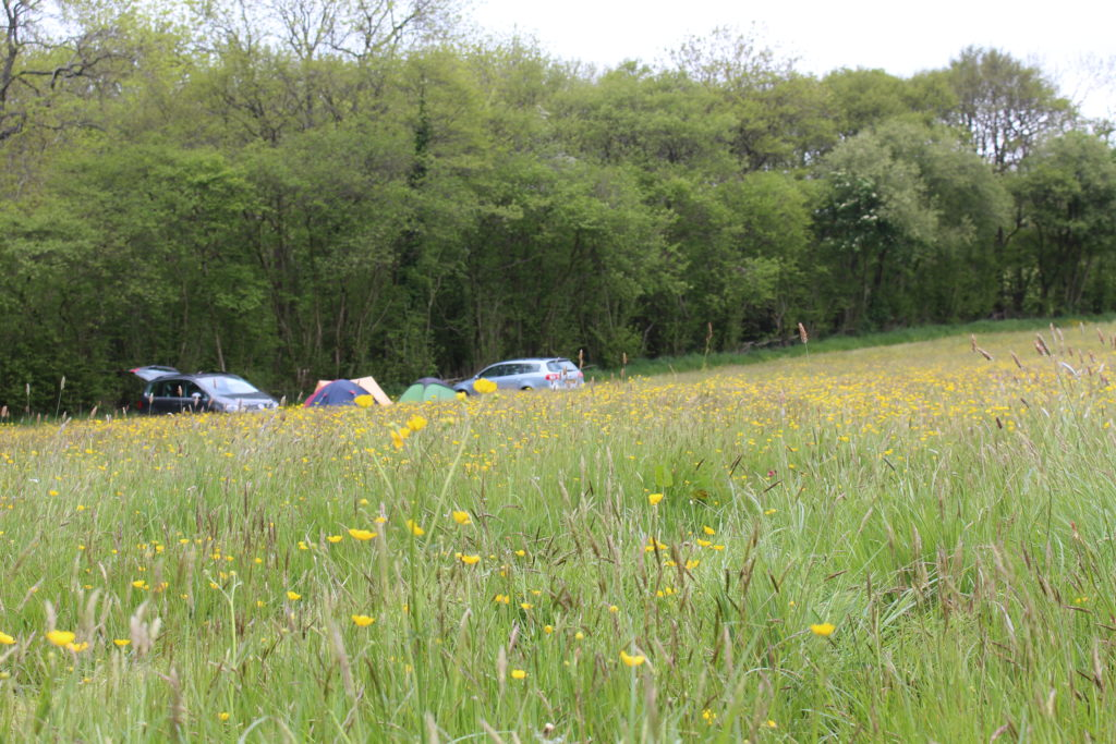 Chapel House Farm, Herefordshire camping field