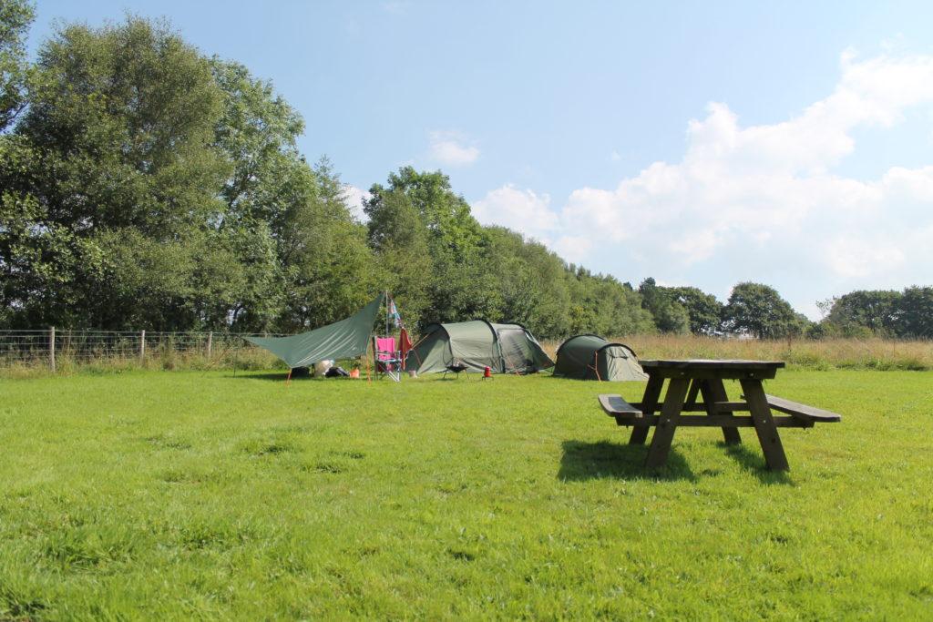 Denmark Farm, Ceredigion camp field