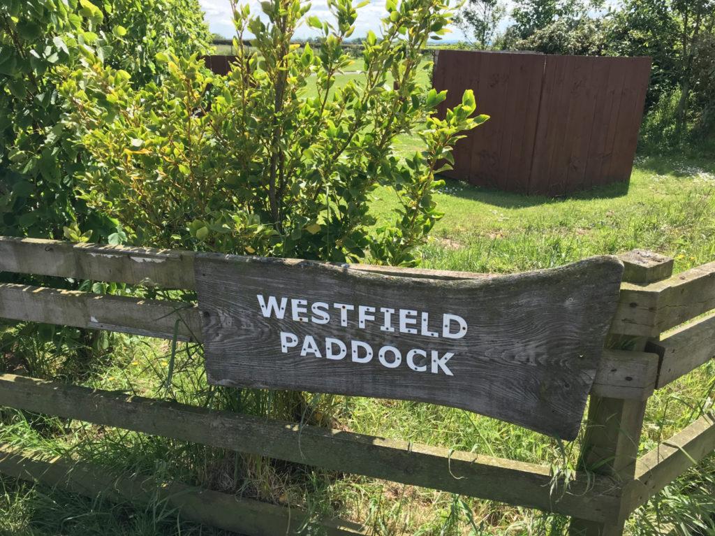 Westfield Paddock Caravan Site 3